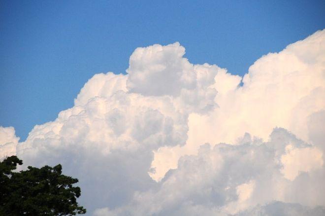 DSC_4207 夏の雲 800.jpg